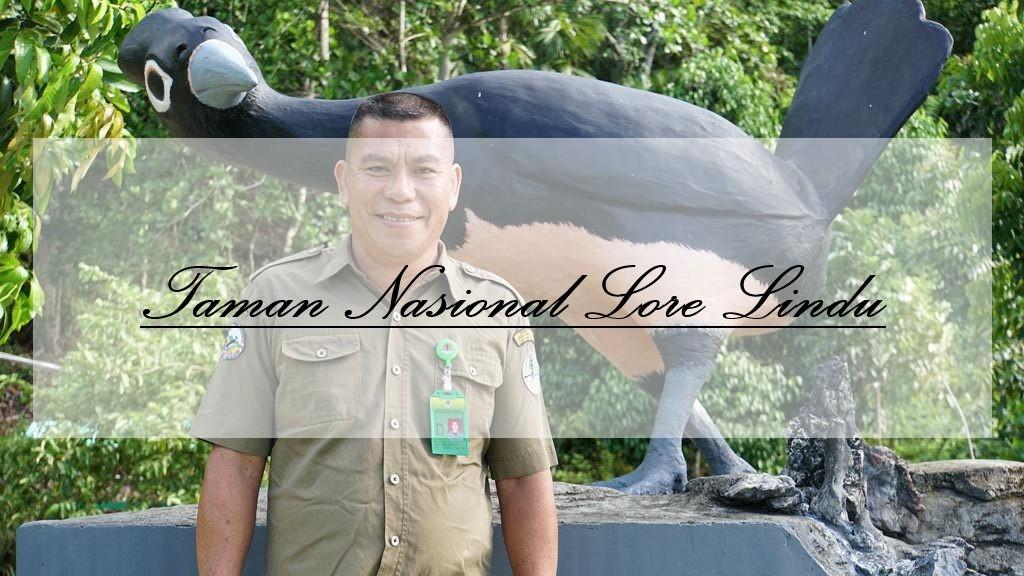 Penangkaran Burung Maleo : Taman Nasional Lore Lindu, Sulawesi Tengah