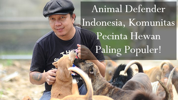 Animal Defender Indonesia, Komunitas Pecinta Hewan Paling Populer!